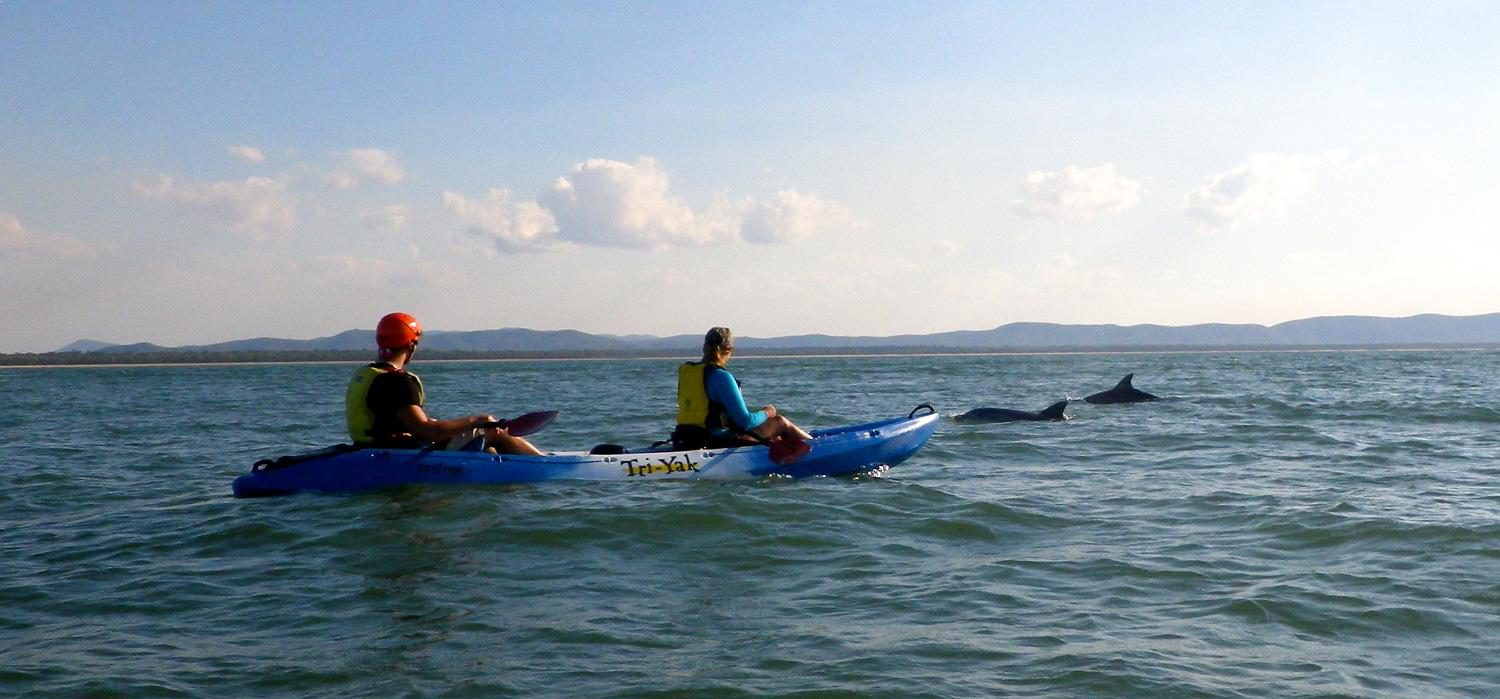 slideshow-kayak-dolphins | Agnes Water Beach Club